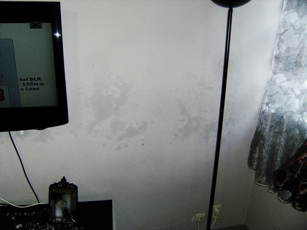 Accechmur - Problèmes d'humidité - Excès de sel